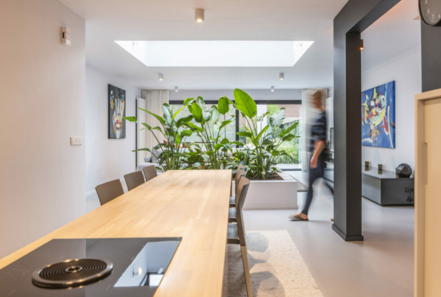 Moderne keuken met planten interieur
